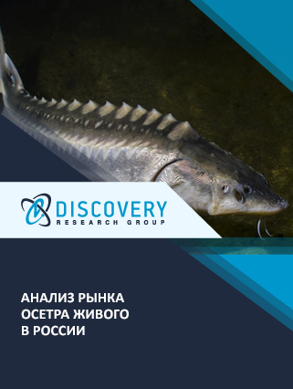 Маркетинговое исследование - Анализ рынка осетра живого в России