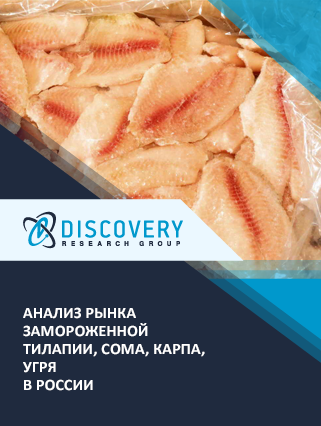 Маркетинговое исследование - Анализ рынка замороженной тилапии, сома, карпа, угря в России