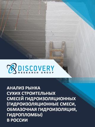 Маркетинговое исследование - Анализ рынка сухих строительных смесей гидроизоляционных (гидроизоляционные смеси, обмазочная гидроизоляция, гидропломбы) в России