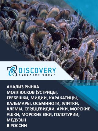 Маркетинговое исследование - Анализ рынка моллюсков (устрицы, гребешки, мидии, каракатицы, кальмары, осьминоги, улитки, клемы, сердцевидки, арки, морские ушки, морские ежи, голотурии, медузы) в России