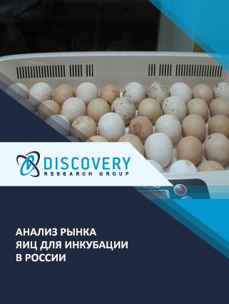 Маркетинговое исследование - Анализ рынка яиц для инкубации в России