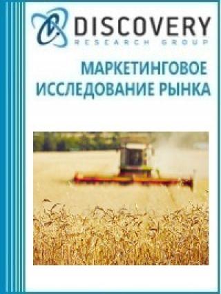 Маркетинговое исследование - Анализ рынка сельского хозяйства в России