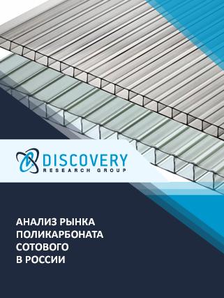Маркетинговое исследование - Анализ рынка поликарбоната сотового в России
