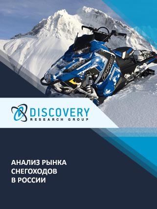 Маркетинговое исследование - Анализ рынка снегоходов в России