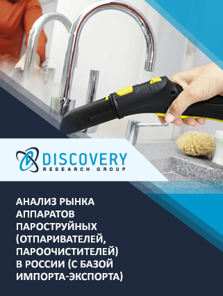 Анализ рынка аппаратов пароструйных (отпаривателей, пароочистителей) в России (с базой импорта-экспорта)