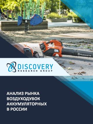Анализ рынка воздуходувок аккумуляторных в России
