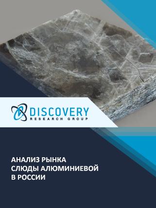Маркетинговое исследование - Анализ рынка слюды алюминиевой в России