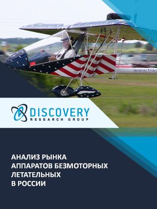 Маркетинговое исследование - Анализ рынка аппаратов безмоторных летательных в России