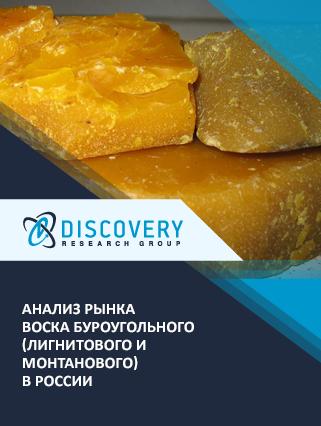 Маркетинговое исследование - Анализ рынка воска буроугольного (лигнитового и монтанового) в России