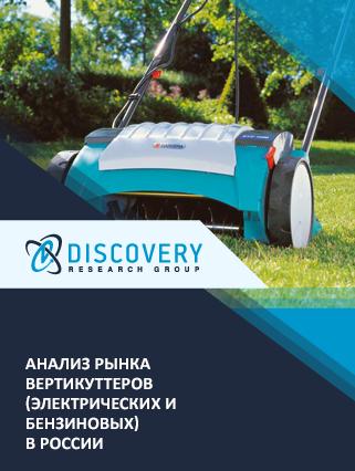 Маркетинговое исследование - Анализ рынка вертикуттеров (электрических и бензиновых) в России