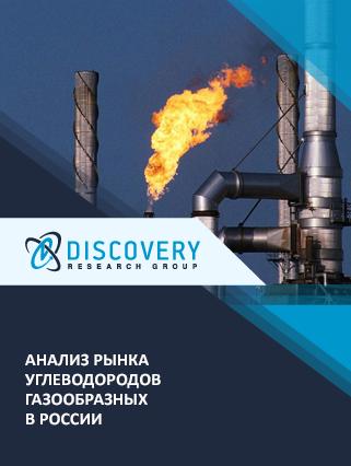 Маркетинговое исследование - Анализ рынка углеводородов газообразных в России