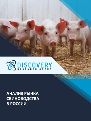 Маркетинговое исследование - Анализ рынка свиноводства в России (с базой импорта-экспорта)