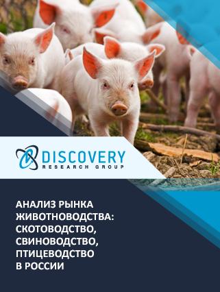 Маркетинговое исследование - Анализ рынка животноводства: скотоводство, свиноводство, птицеводство в России (с базой импорта-экспорта)