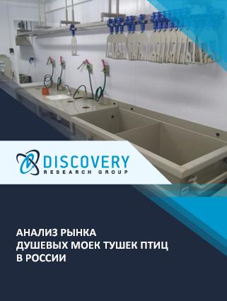 Маркетинговое исследование - Анализ рынка душевых моек тушек птиц в России