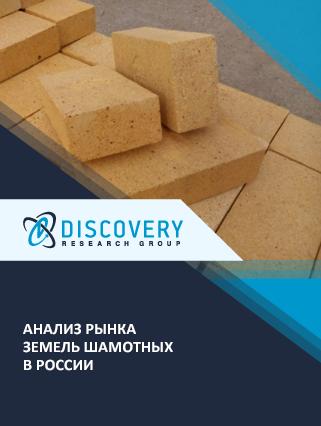Маркетинговое исследование - Анализ рынка земель шамотных в России