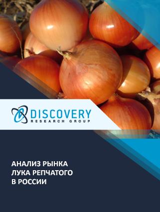 Маркетинговое исследование - Анализ рынка лука репчатого в России