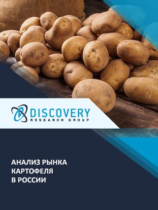 Маркетинговое исследование - Анализ рынка картофеля в России (с базой импорта-экспорта)