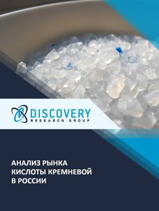 Маркетинговое исследование - Анализ рынка кислоты кремневой в России