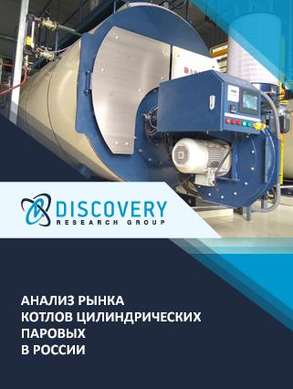 Маркетинговое исследование - Анализ рынка котлов цилиндрических паровых в России