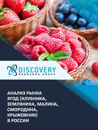 Маркетинговое исследование - Анализ рынка ягод (клубника, земляника, малина, смородина, крыжовник) в России
