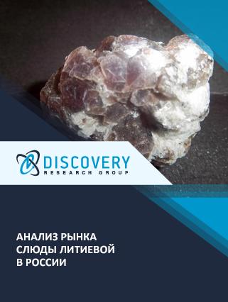 Маркетинговое исследование - Анализ рынка слюды литиевой в России