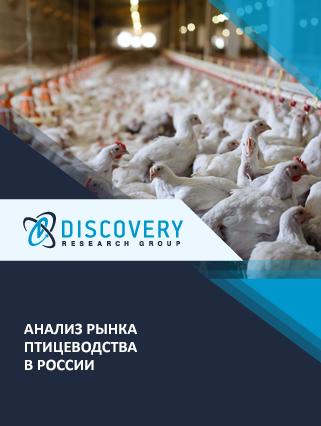 Маркетинговое исследование - Анализ рынка птицеводства в России (с базой импорта-экспорта)