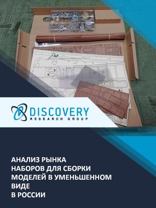 Анализ рынка наборов для сборки моделей в уменьшенном виде в России