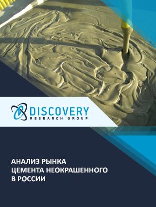 Маркетинговое исследование - Анализ рынка цемента неокрашенного в России
