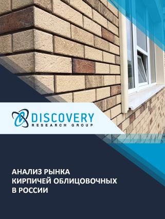 Маркетинговое исследование - Анализ рынка кирпичей облицовочных в России