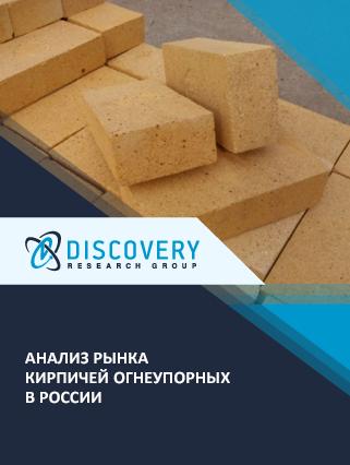 Маркетинговое исследование - Анализ рынка кирпичей огнеупорных в России