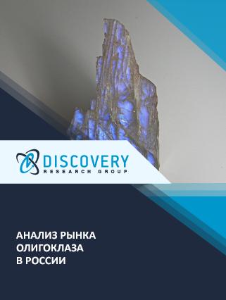 Маркетинговое исследование - Анализ рынка олигоклаза в России