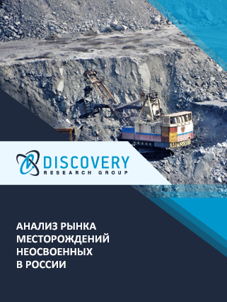 Маркетинговое исследование - Анализ рынка месторождений неосвоенных в России