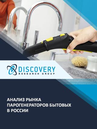 Анализ рынка парогенераторов бытовых в России