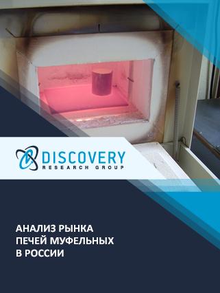 Маркетинговое исследование - Анализ рынка печей муфельных в России