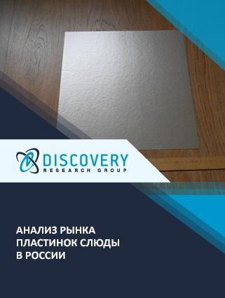 Маркетинговое исследование - Анализ рынка пластинок слюды в России