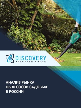Маркетинговое исследование - Анализ рынка пылесосов садовых в России