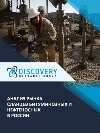 Маркетинговое исследование - Анализ рынка сланцев битуминозных и нефтеносных в России