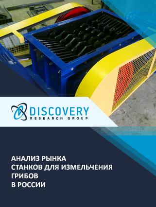 Маркетинговое исследование - Анализ рынка станков для измельчения грибов в России