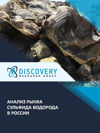 Маркетинговое исследование - Анализ рынка сульфида водорода в России