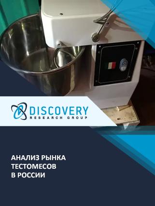 Маркетинговое исследование - Анализ рынка тестомесов в России