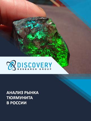 Маркетинговое исследование - Анализ рынка тюямунита в России