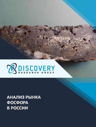 Маркетинговое исследование - Анализ рынка фосфора в России