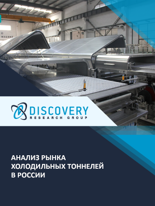Анализ рынка холодильных тоннелей в России