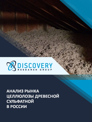 Маркетинговое исследование - Анализ рынка целлюлозы древесной сульфатной в России