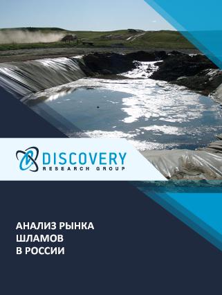 Маркетинговое исследование - Анализ рынка шламов в России