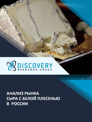 Анализ рынка сыра с белой плесенью в России (с базой импорта-экспорта)
