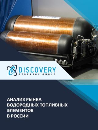 Маркетинговое исследование - Анализ рынка водородных топливных элементов в России (с базой импорта-экспорта)