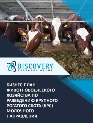 Бизнес-план животноводческого хозяйства по разведению крупного рогатого скота (КРС) молочного направления