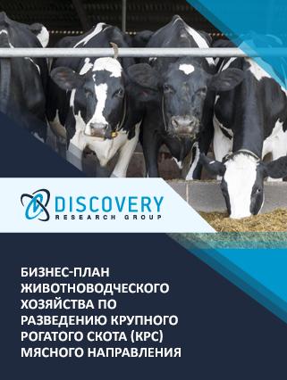 Бизнес-план животноводческого хозяйства по разведению крупного рогатого скота (КРС) мясного направления