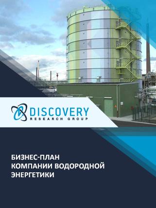 Бизнес-план компании водородной энергетики
